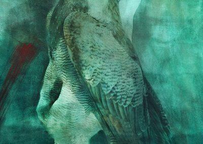 Série mythologique - Alfons Alt / Scan haute def / photomontage / réalisation positif jet d'encre pour résinotype