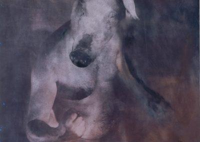 Alfons Alt / Scan haute def pour reproduction et tirage jet d'encre
